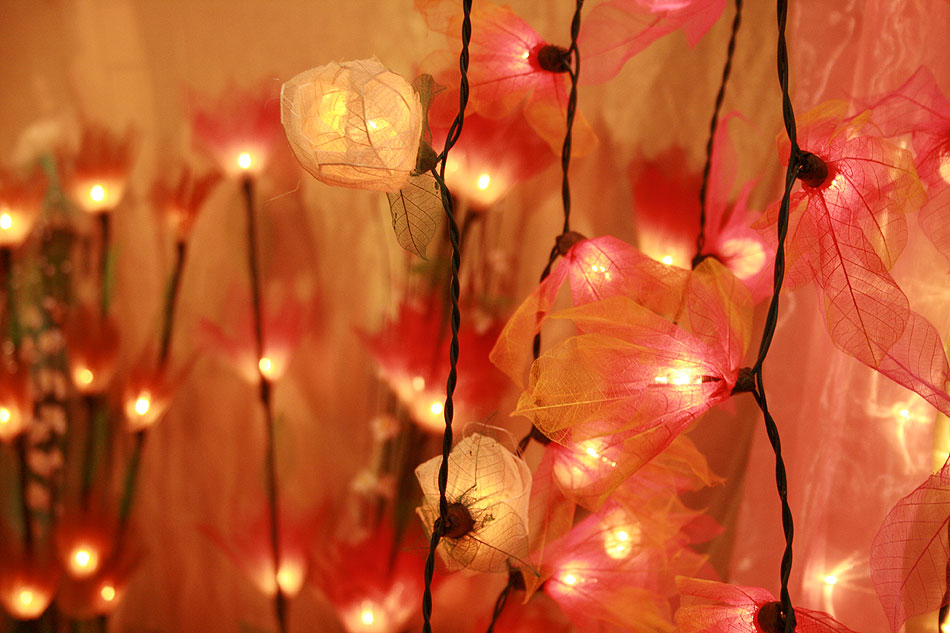 Illuminating flowers