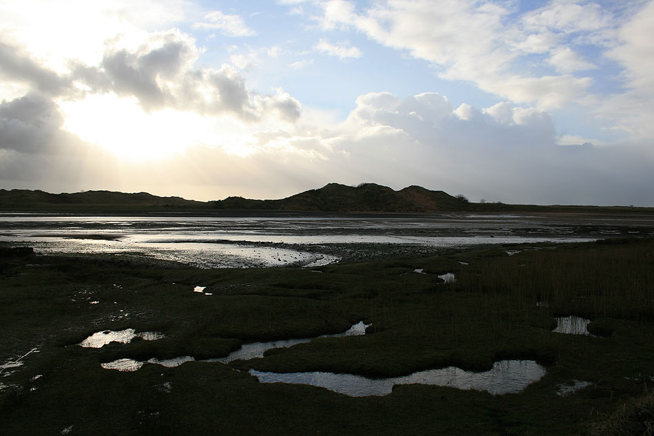 Cumbrian marshes