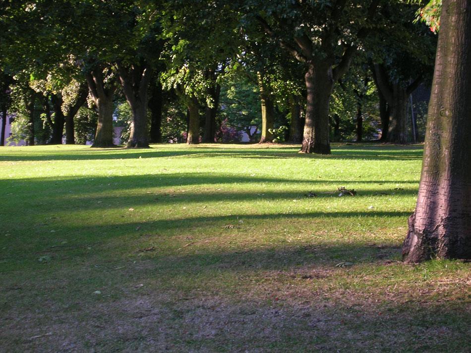 Evening sun in Holyrood Park